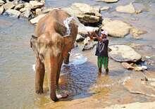 Nagykörút Srí Lankán