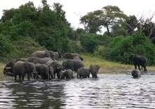 Namíbia - Botswana - Zimbabwe körutazás