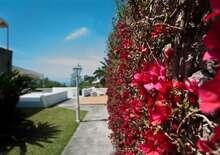 Residence Palummera- Nyaralás Ischia -szigeten