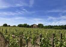 Bordeaux - bor és kultúra