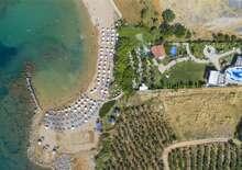 Numa Bay  Exclusive