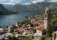Olívaszüret Montenegróban